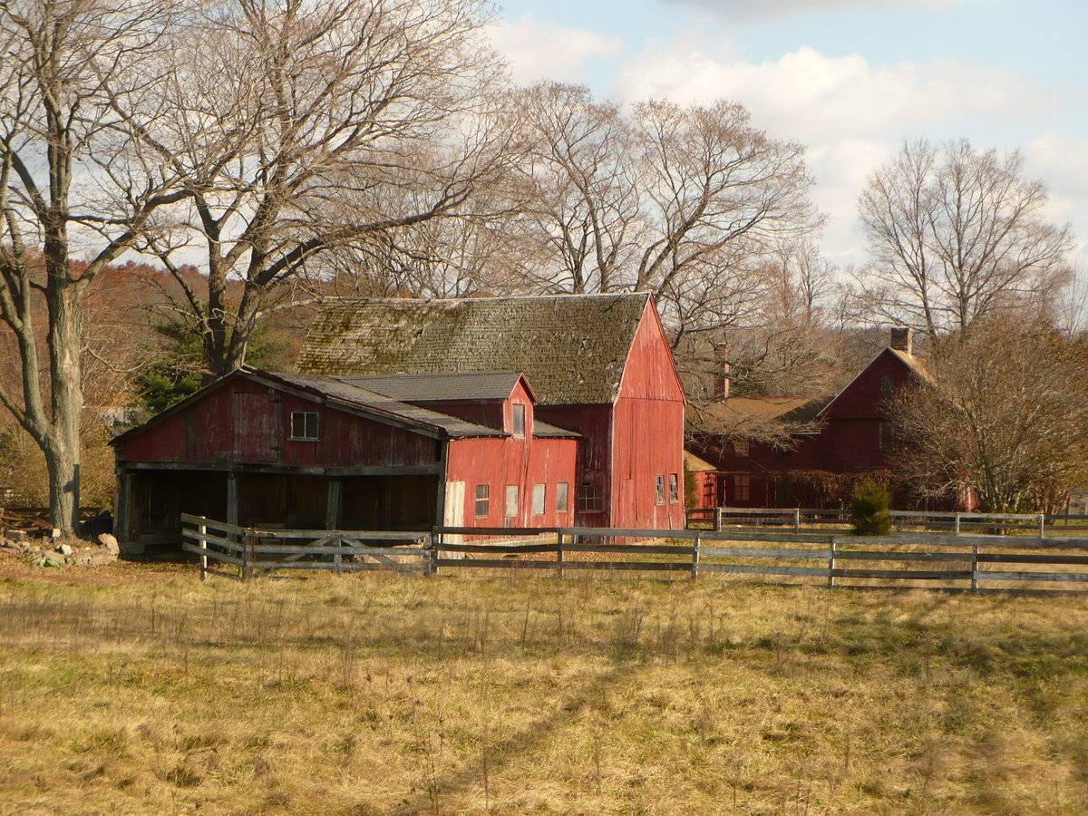 Rolling Acres Farm 394 Foxon Road Rte 80 North
